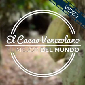 cacao-caja-video